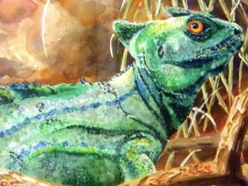 18070-lizard